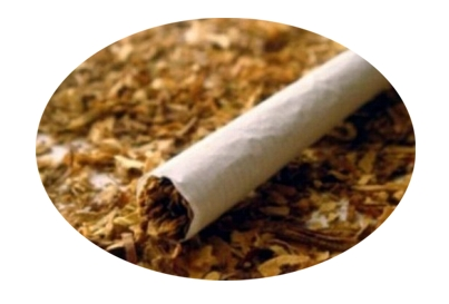ocb sigara kağıdı