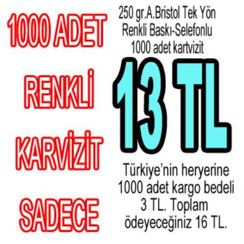 RENKLİ KARTVİZİT 13