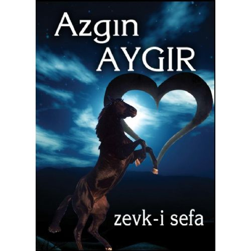 AZGIN AYGIR