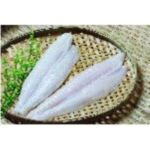 Pangasius, Cuttlefish, Squid, B/T Shrimp, Crab, Octopus, ...