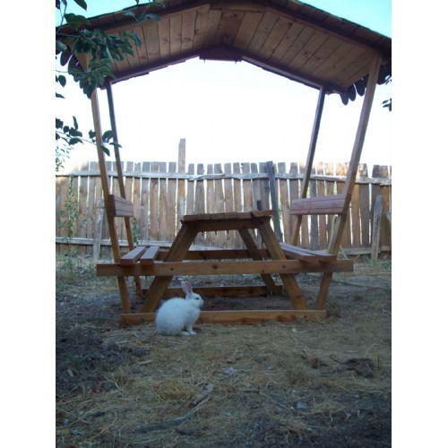 piknik masas�