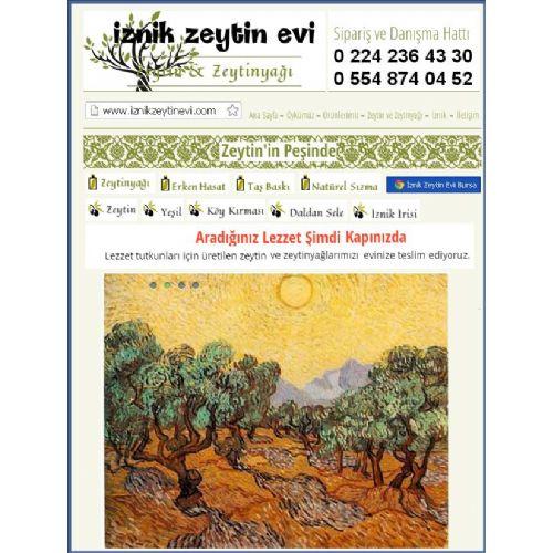 Zeytin ve Zeytin Yağı