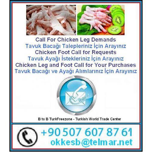 Tavuk Baca�� - Chick