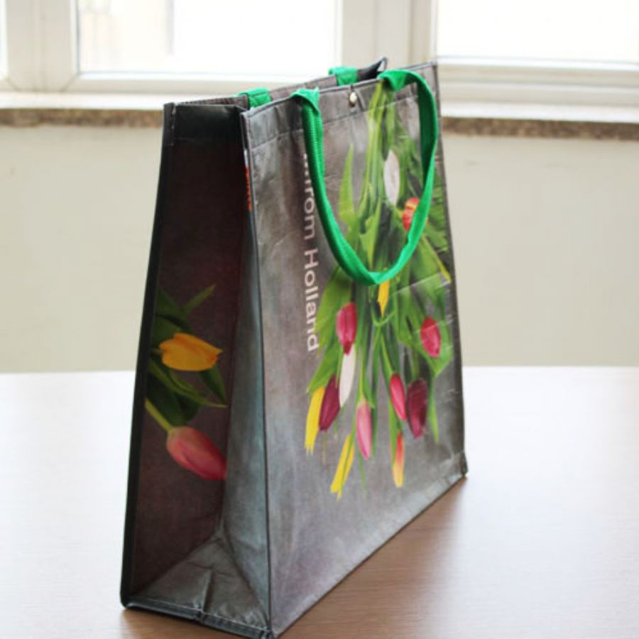 Non_Woven_Printed_Shopping_Bag
