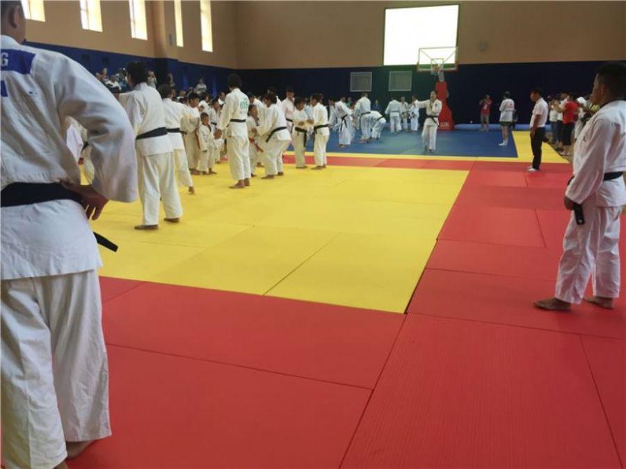 Judo Gym Mats