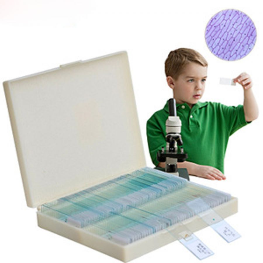 Series Prepared Microscope Glass Slides