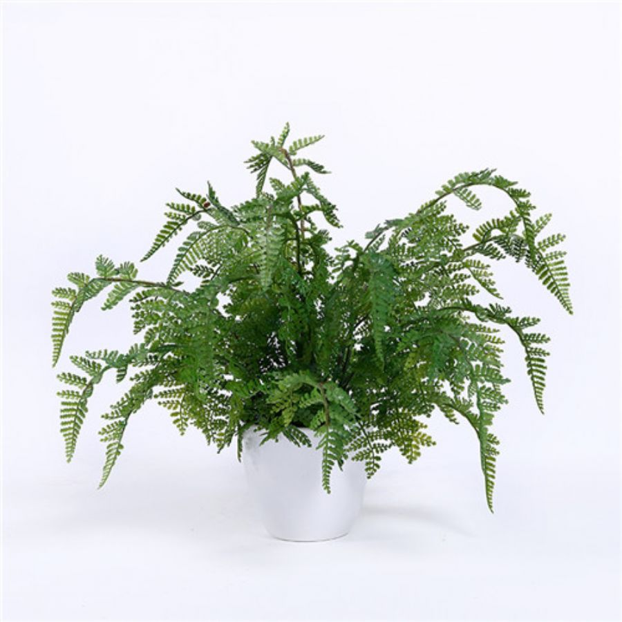 Artificial Fern Plan