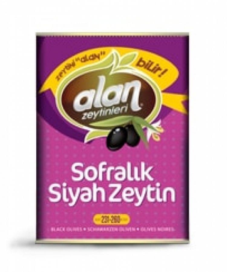 Alan Special Ya�l� Z