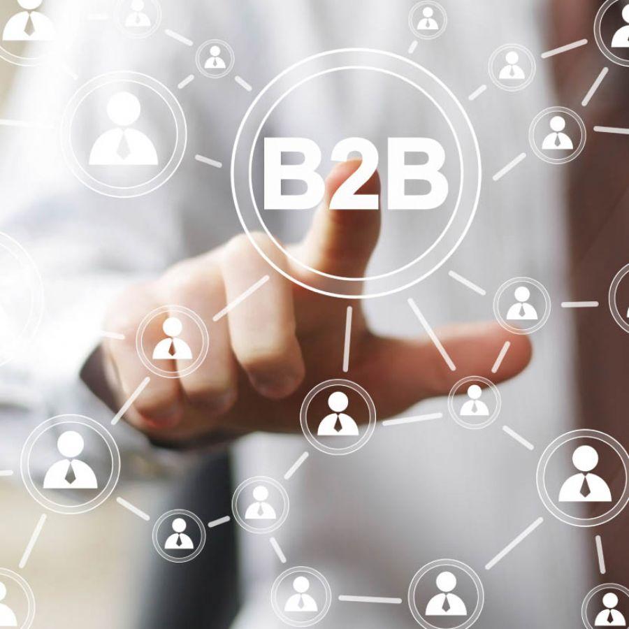 B2B toplantıları