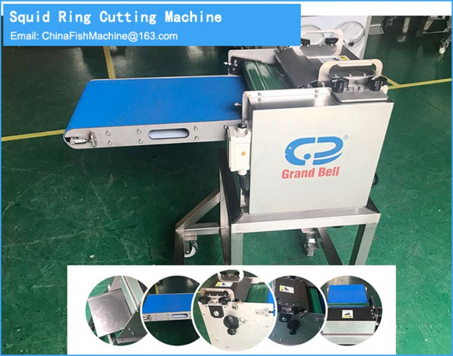 Squid ring cutting machine