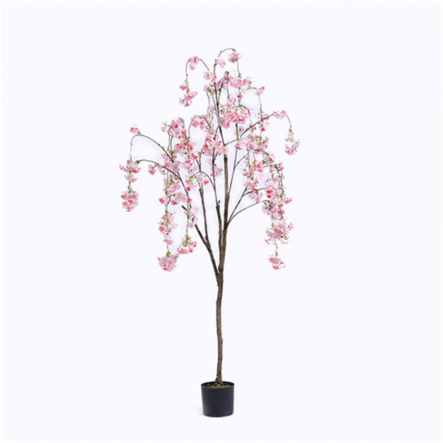 Plastic Cherry Bloss