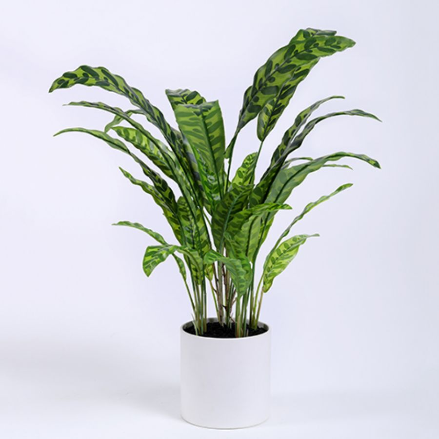 Artificial Calathea