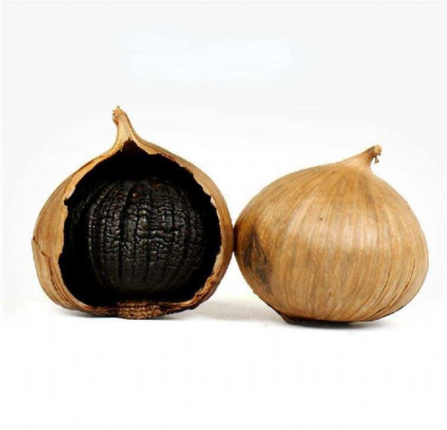 Black Garlic Extract Powder