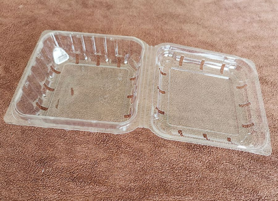 Disposable PET transparent food box