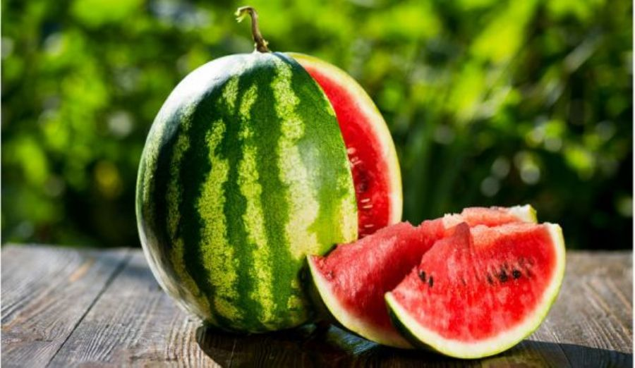 Watermelon delivery period from August to October