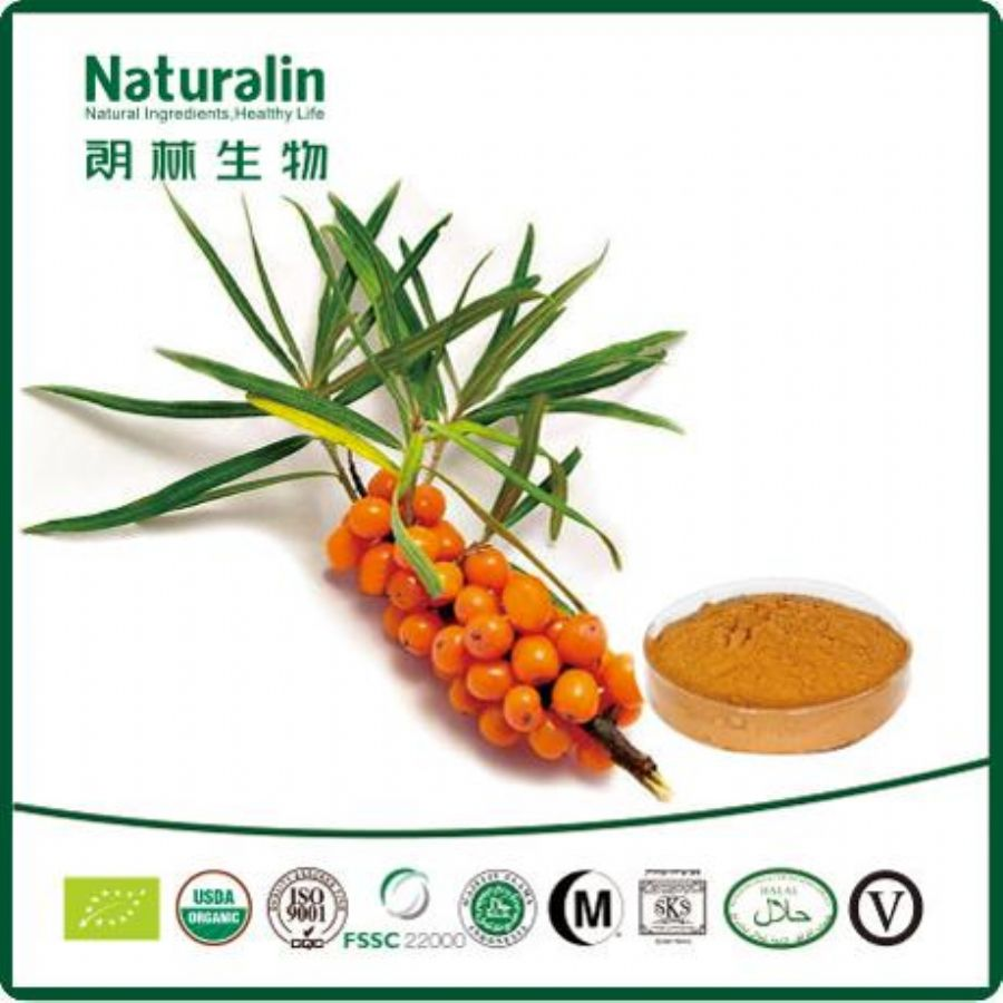 Organic_Sea_Buckthorn_Powder