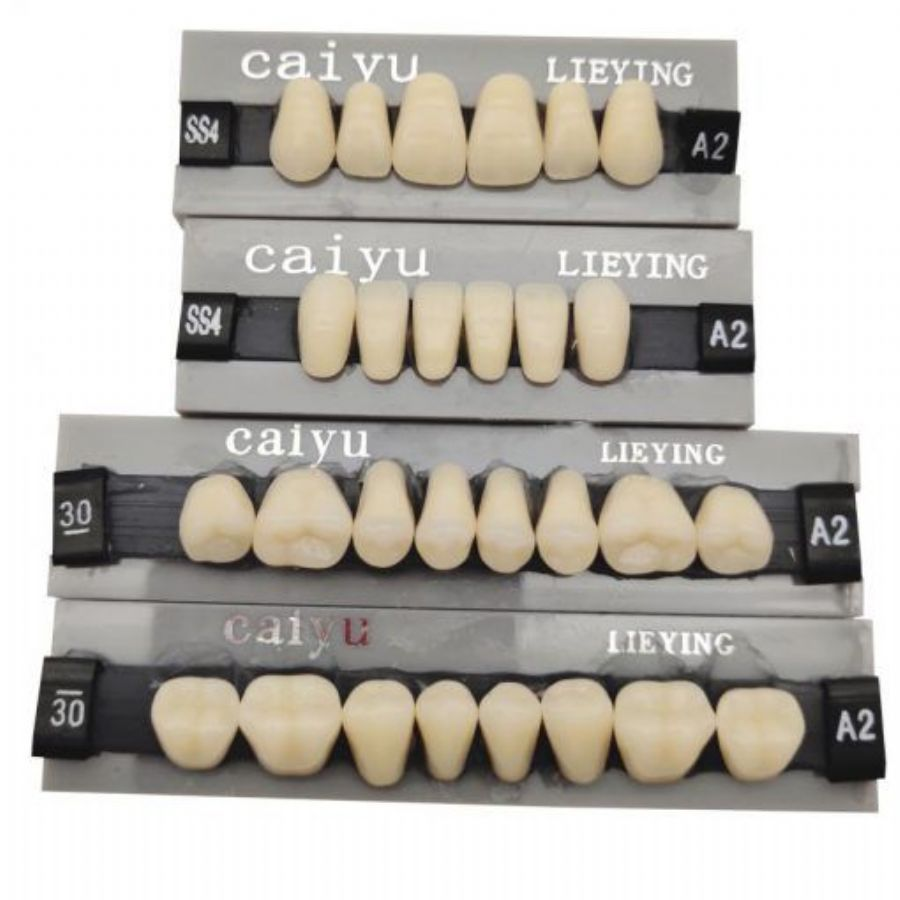 Dental_Lab_Teeth_Endura