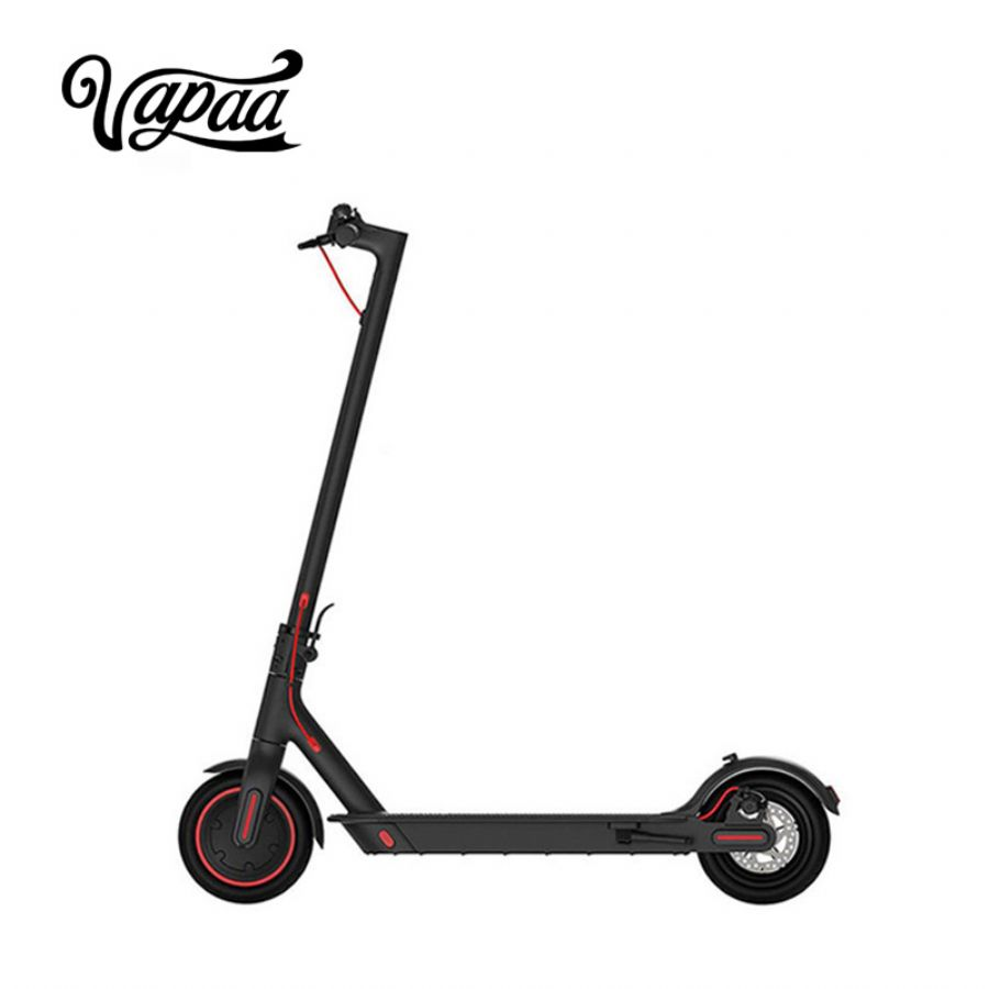 Adult Electric Scoot