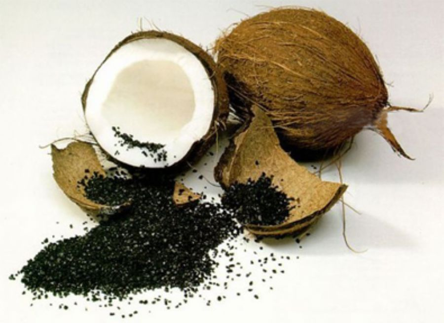 Coconut Shell based