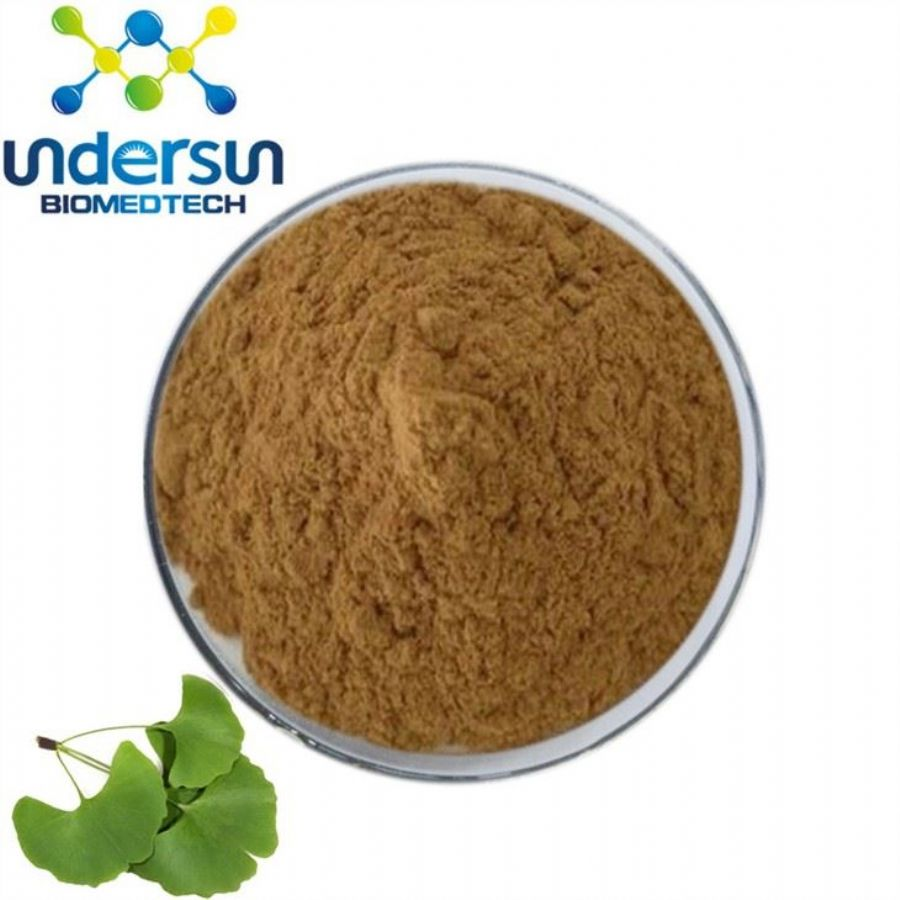 Ginkgo_Leaf_Extract