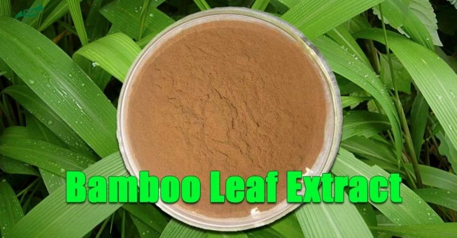 Bamboo_Extract_Powder_Flavones_Bamboo_Leaf_Extract
