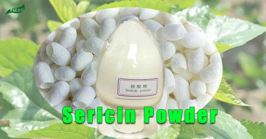 Sericin Silk Powder